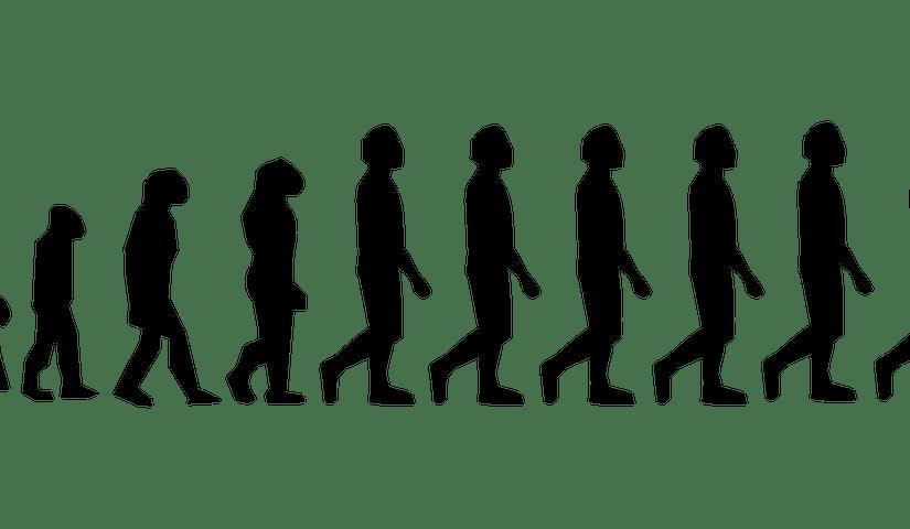 Darwinismo y SIPRI: interin@s docentes excluid@s e inactivos deoficio.